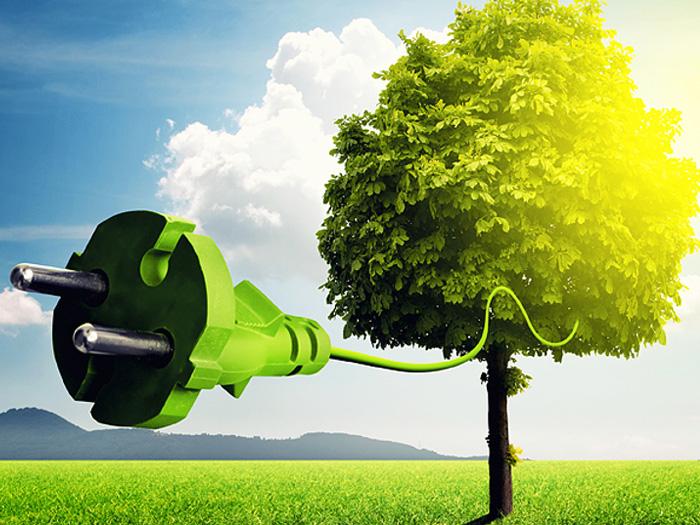 Trotz hohen Ölpreises: Delle für grüne Energie